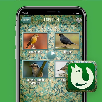 vogelgeluiden app Fluit Tele2