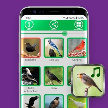 vogelgeluiden app Vogelgeluiden Tele2