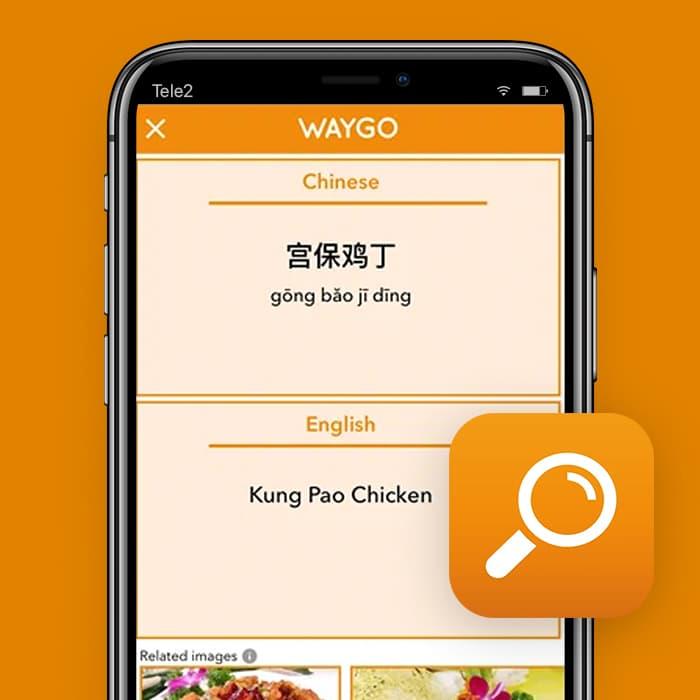 vertaal app Waygo