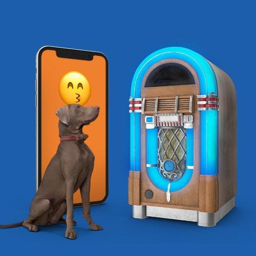 Jukebox-Spotify-Pets-Tele2
