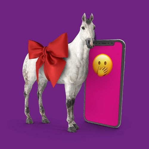 Paard-valentijnscadeau-Tele2