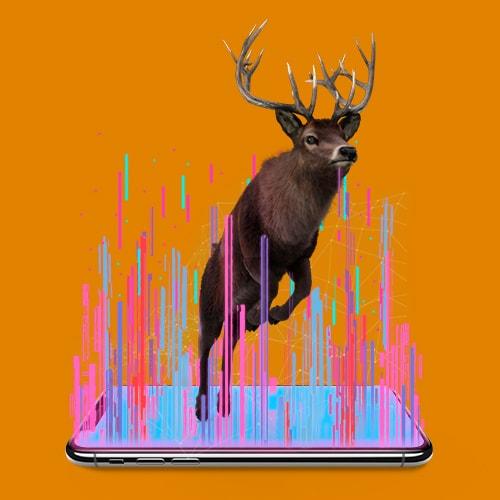 deer-Google-AR-Tele2