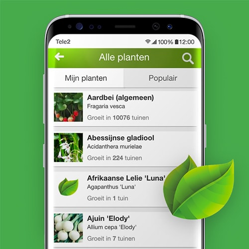 MijnTuin-moestuin-app-Tele2