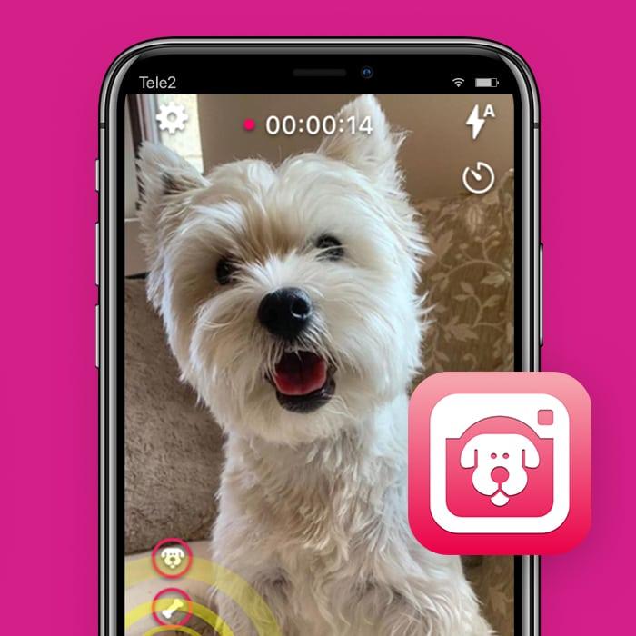 Dogcam-honden-app-Tele2